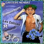 romainr39372