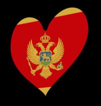 VI SERIA 87-86