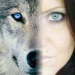 sowolf