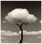 I <3 Clouds