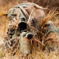 Forum gratis : Snipers Brasil 1 Shot 1 Kill 111-74