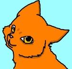 iiwarriorcatsfan
