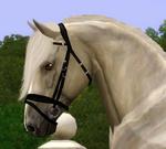 Reiterforum Sims 68-99