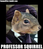 Professeur Squirrel