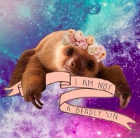 SlothKitty