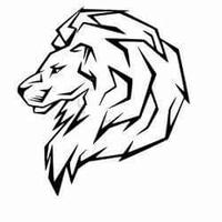 Panthera Leo 06