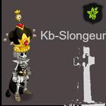 Kb-Slongeur