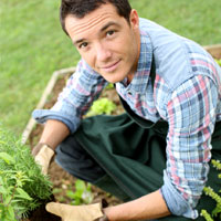 Antoine le jardinier