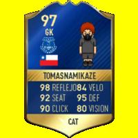 TomasNamikaze