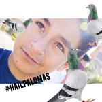 manuel_rolez
