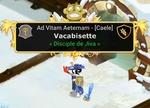Vacabisette