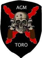 TORO AGM