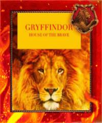 Дом Гриффиндор