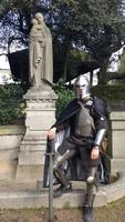 Sir Caelan de Laïsander