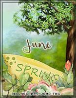 June845