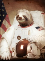 TheSloth