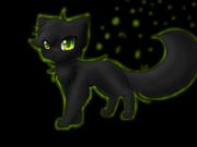 Neubla, a cat 3745859460