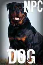NPC Dog