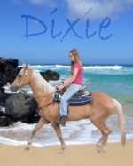 ♥Dixie Diamond™