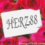 herz88