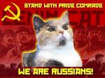 Camarada Lenin Cat