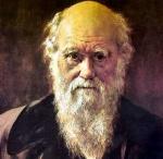 Darwinista