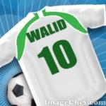 walid20141