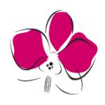 comuneorchidee