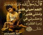 mohamed nazih