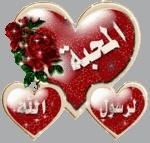 شاعر الحب