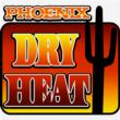 PhoenixGM