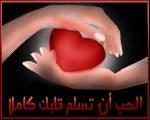 نشوى رضا