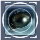 AuroraDesigns_ZooMaster