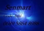 senmart