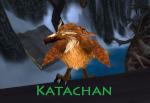Katachan