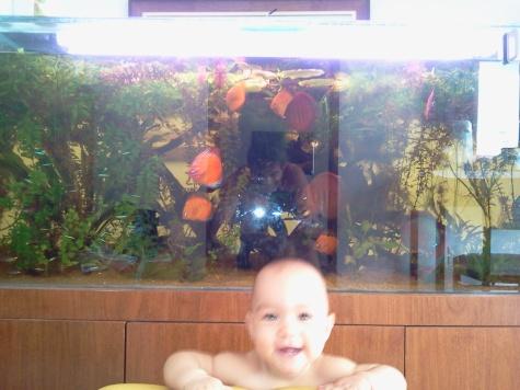 Minha filha Nicolle mostrando orgulhosa e feliz nosso aquário.