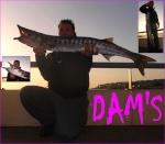 damsdu06