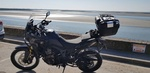 Bastimus 1000CRF