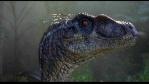 predraptor