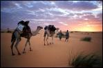 صحراوي وأفتخر