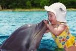 NTaikal Delfin