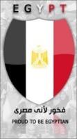 أسد العرب