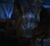 DinoDude65
