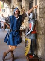 Michel du conflent