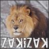ZakiZak