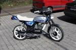 rene2000