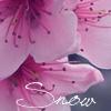 Snowdreamer