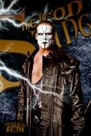 The Icon Sting(sam)