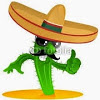 mexxicain