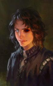 Harry Arryn